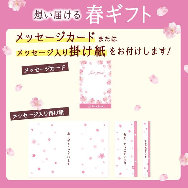 春ギフト メッセージ入り掛け紙 メッセージカード